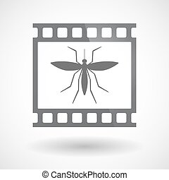 Isolated 35mm film frame slide photogram with  a mosquito