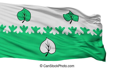 Isolated Aloja city flag, Latvia - Aloja flag, city of...