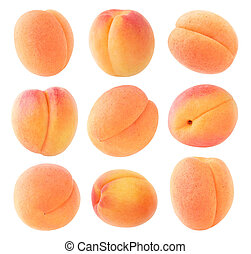 Isolated apricots collection