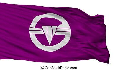 Isolated Arakawa city flag, prefecture Tokyo, Japan -...