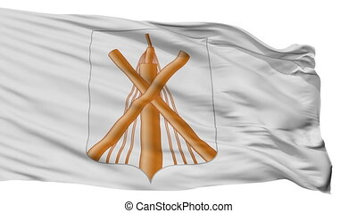 Isolated Babruisk city flag, Belarus - Babruisk flag, city...