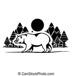 Isolated bear animal design