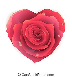 Isolated beautiful red rose heart. EPS 10