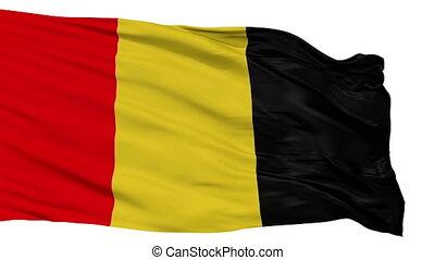 Isolated Besancon city flag, France - Besancon flag, city of...