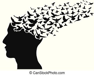 birds flying human head