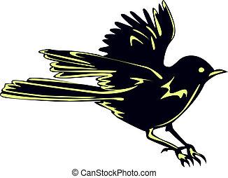 Isolated Black Bird Sparrow In Flight