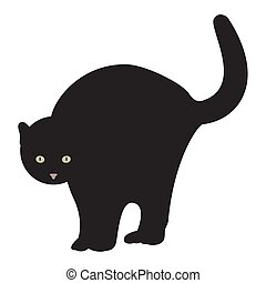 Isolated black cat