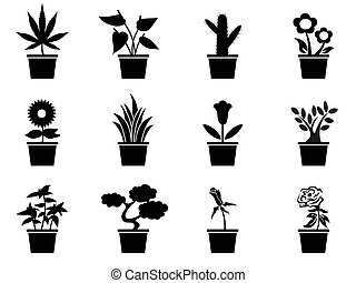 isolated black pot plants icons set from white background