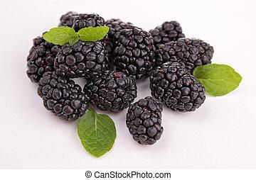 isolated blackberries on white background