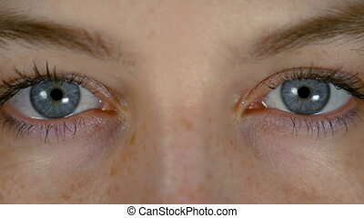 Isolated blue eyes of young beautiful woman