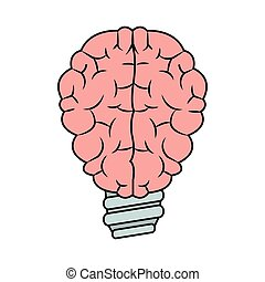 Isolated brain and bulb design