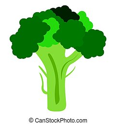 Isolated broccoli illustration