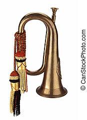 Isolated Bugle