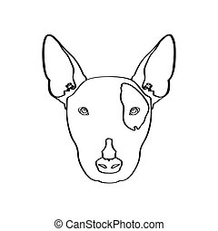 Isolated bull terrier avatar on a white background, Dog...