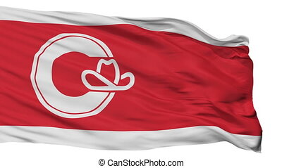 Isolated Calgary Alberta city flag, Canada - Calgary Alberta...