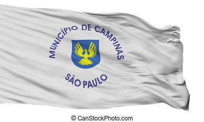 Isolated Campinas city flag, Brasil - Campinas flag, city of...