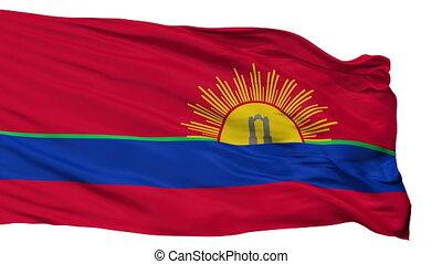 Isolated Carabobo State city flag, Venezuela - Carabobo...