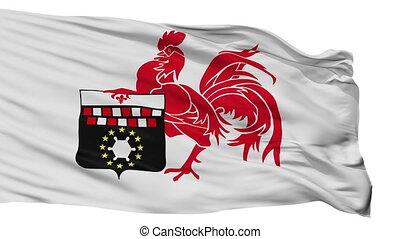 Isolated Charleroi city flag, Belgium - Charleroi flag, city...