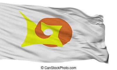 Isolated Chetumal city flag, Mexico - Chetumal flag, city of...