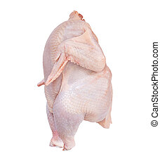 isolated chicken with clipping path