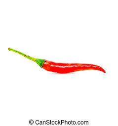 Isolated chili on white background