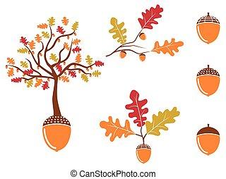 color oak acorn icons set