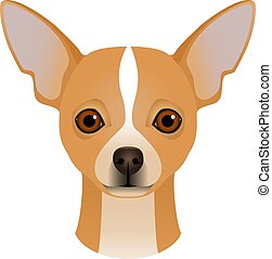 Isolated colorful head and face of chihuahua on white background. Color flat cartoon breed dog portrait.