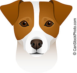 Isolated colorful head and face of jack russell terrier on white background. Flat cartoon breed dog portrait.