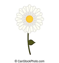 Isolated daisy flower icon