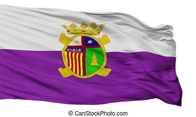 Isolated Desamparados city flag, Costa Rica - Desamparados...