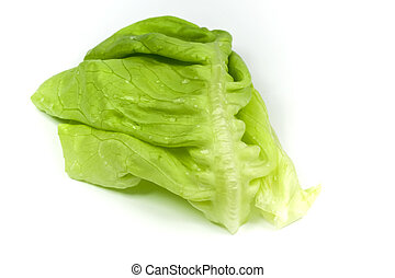 Isolated detail of leaf lettuce