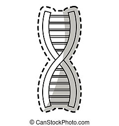 Isolated dna design