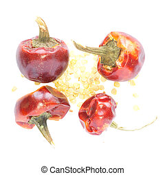 isolated dried red peppers with seeds