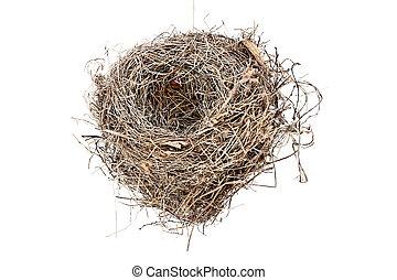 Isolated Empty Bird Nest