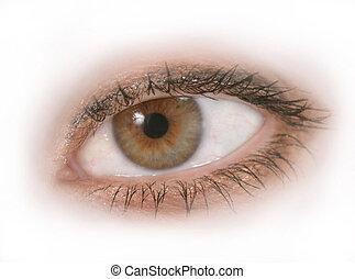 Isolated Eye 2