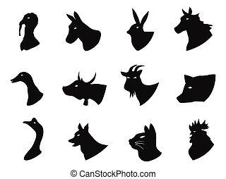 Farm animals icons set