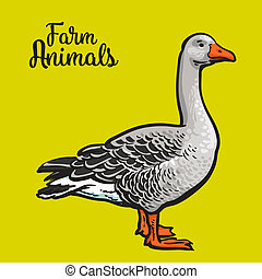 Isolated farm goose on a yellow background