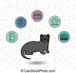Isolated ferret and pet icon set design