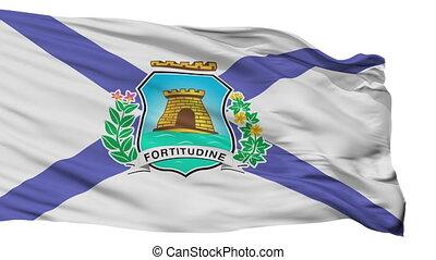 Isolated Fortaleza city flag, Brasil - Fortaleza flag, city...