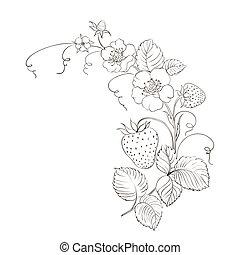 isolated., fresas