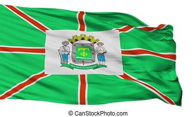 Isolated Goiania city flag, Brasil - Goiania flag, city of...