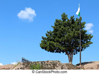 Isolated green tree against blue sky on the top of a mountain