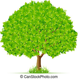 Isolated Green Tree with Grass and Flowers