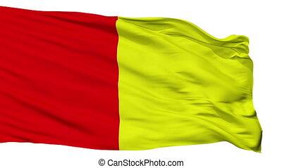 Isolated Grenoble city flag, France - Grenoble flag, city of...