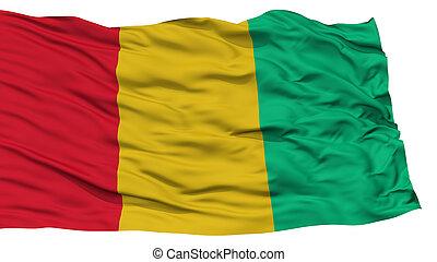 Isolated Guinea Flag
