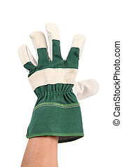 hand with glove on white background