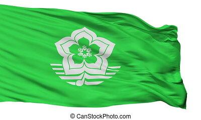 Isolated Harbin city flag, China - Harbin flag, city of...