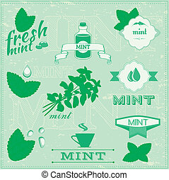 herbs, mint - isolated herbs, mint vector leaves set...