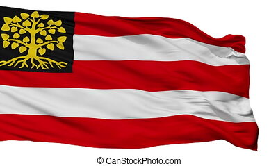 Isolated Hertogenbosch city flag, Netherlands -...