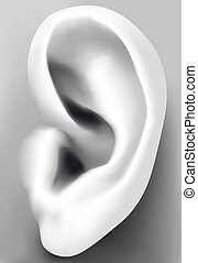 Isolated illustration Ear closeup